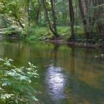 Koszenie rzeki Łyny. Uwaga na utrudnienia
