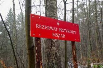 rezerwat-mszar
