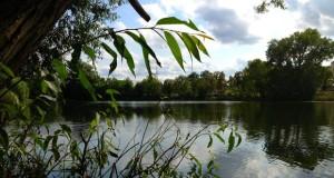 Już w sobotę II Rodzinny piknik nad Jeziorem Długim