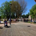 otwarcie-parku-centralnego-olsztyn (55)