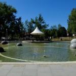 otwarcie-parku-centralnego-olsztyn (8)