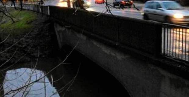 most-jakuba