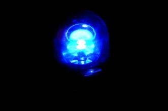 kogut-policja