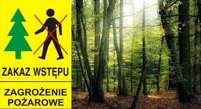 las-zagrozenie-pozarowe