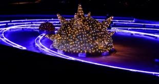 iluminacja-fontanny-park-centralny-olsztyn (7)