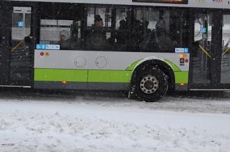 autobus-zima