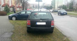 trawnik-samochod5