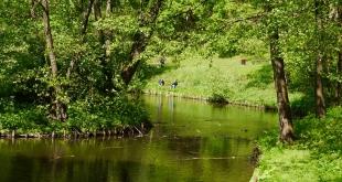 5-festyn-magiczny-park-jakubowo (10)