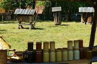 dzien-pszczol-olsztynek