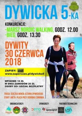 dywicka-5