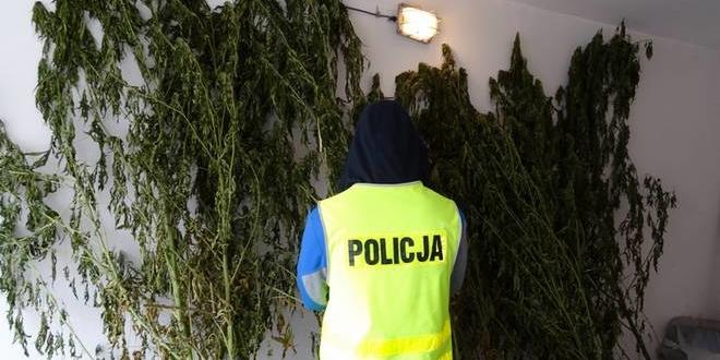 fot.policja.gov.pl