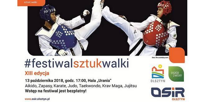 13-festiwal-sztuk-walki