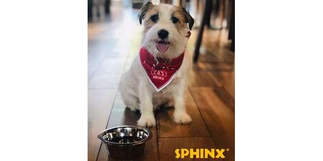 sphinx-9859