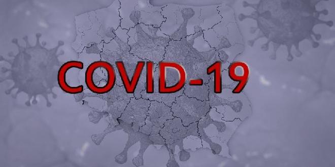 virus-19