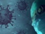 virus544